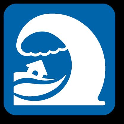 Tsunami Awareness (AWR-217)