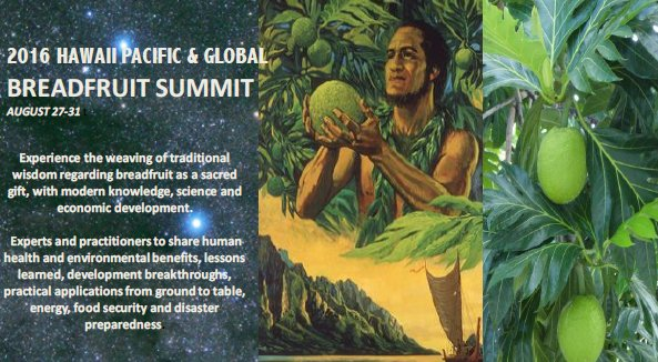 This a picture of the 2016 Hawaii Pacific and Global Breadfruit Summit advertisement which shows pictures of breadfruit and a man holding the breadfruit in his hands. The advertisement also provides a brief description of what the summit is about.